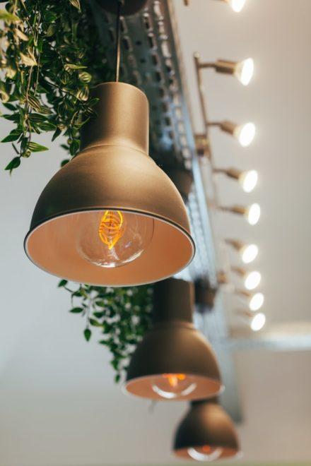 Já pensou em usar plantas nos pendentes de sua casa? foto/reprodução: szabo-viktor-unsplash